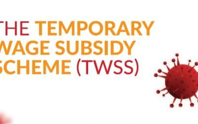 The Temporary Wage Subsidy Scheme (TWSS)